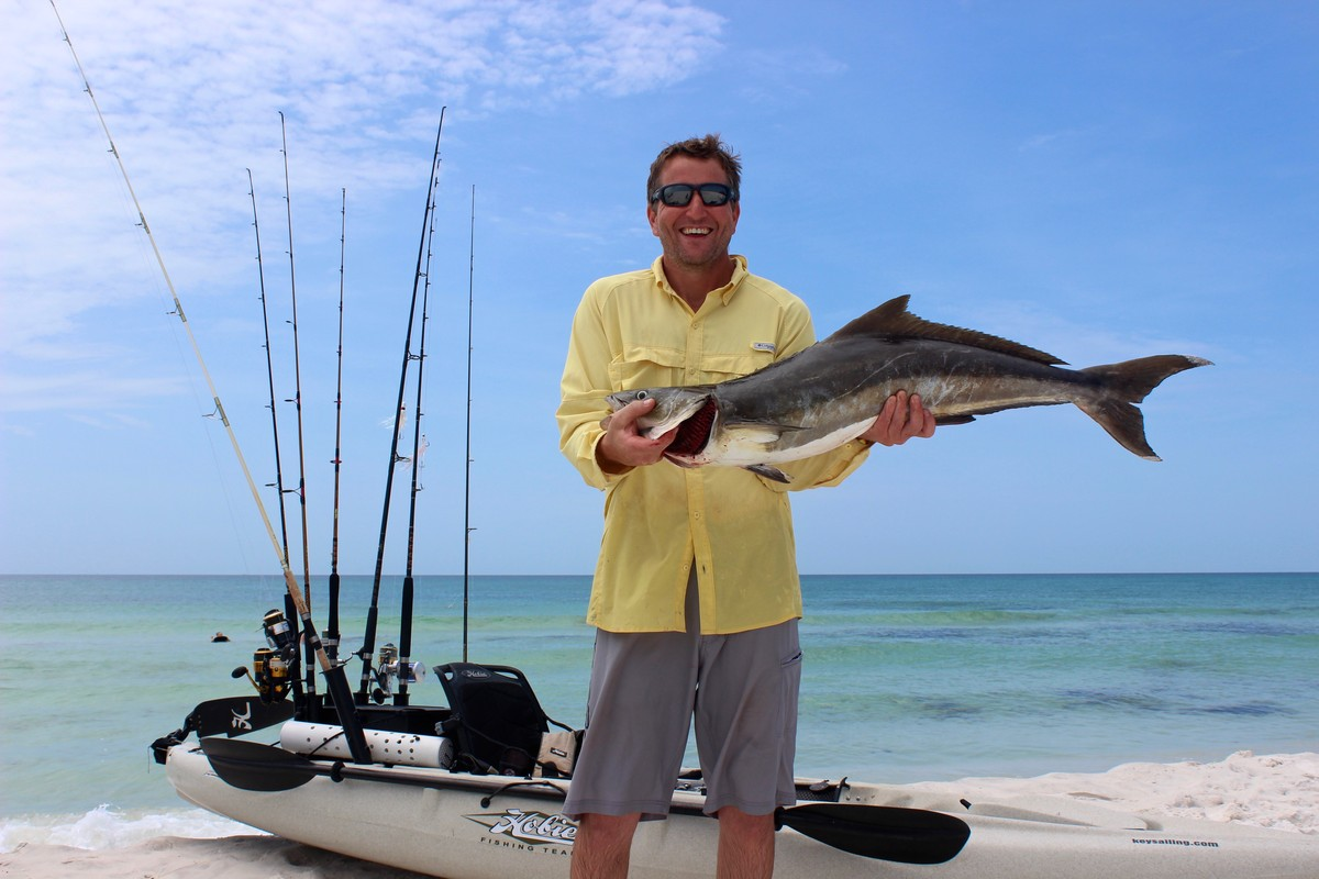 Fishing hunting panhandle cobia from the kayak hobie for Fish hunt fl