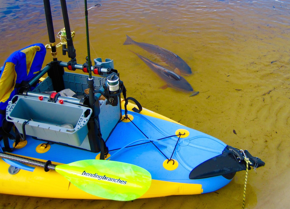 Article image - Kayak fishing accessories