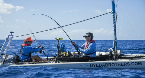 Article image - The Uyeda Brothers' Anniversary Marlin