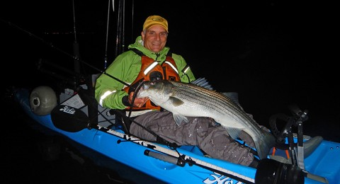 Article image - Big plastics for striped bass