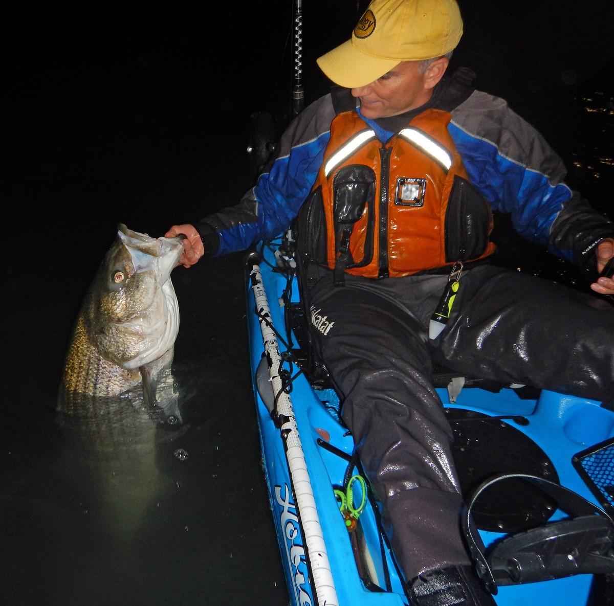 Article image - Big plastics for striped bass