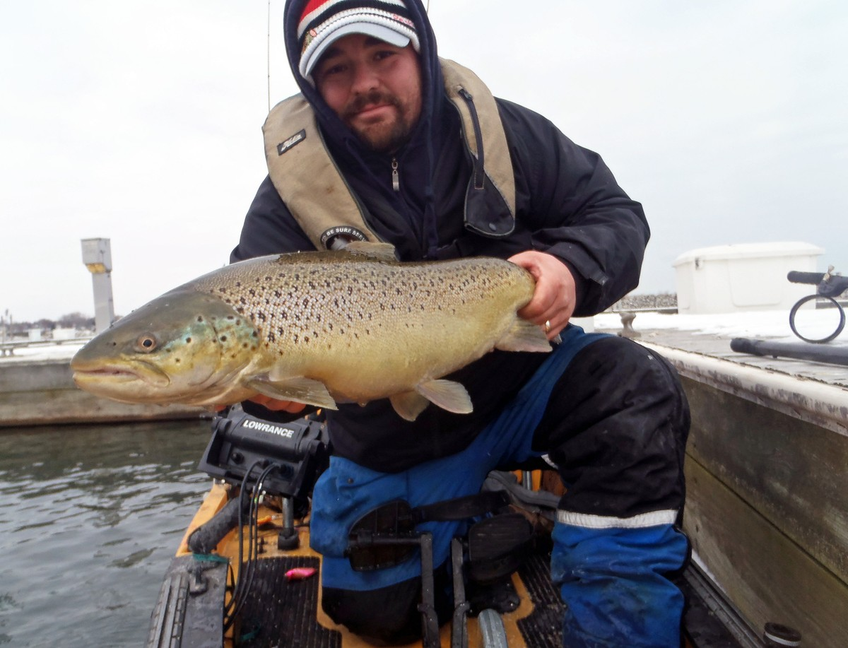 Article image - trophy brown trout