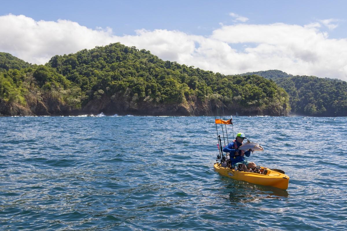 Article image - Wild Coast Day 1