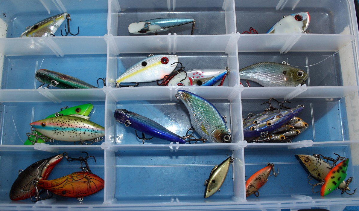 Article image - lipless crankbaits