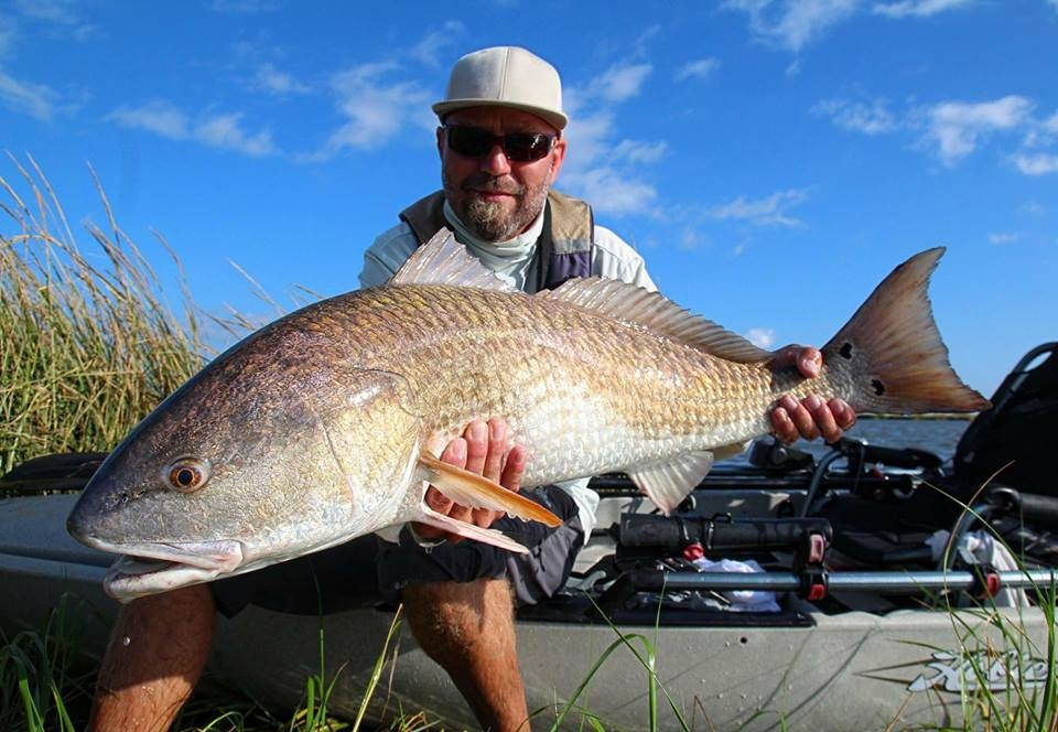 Article image - How to Win IFA Angler of the Year