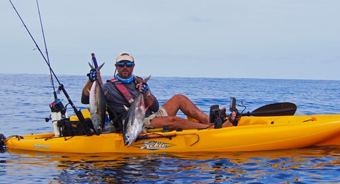 Article image - Popping Panama Yellowfin