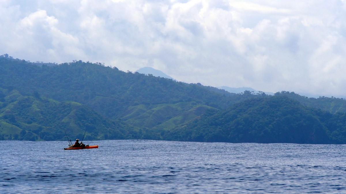 Article image - Popping Panama Yellowfin