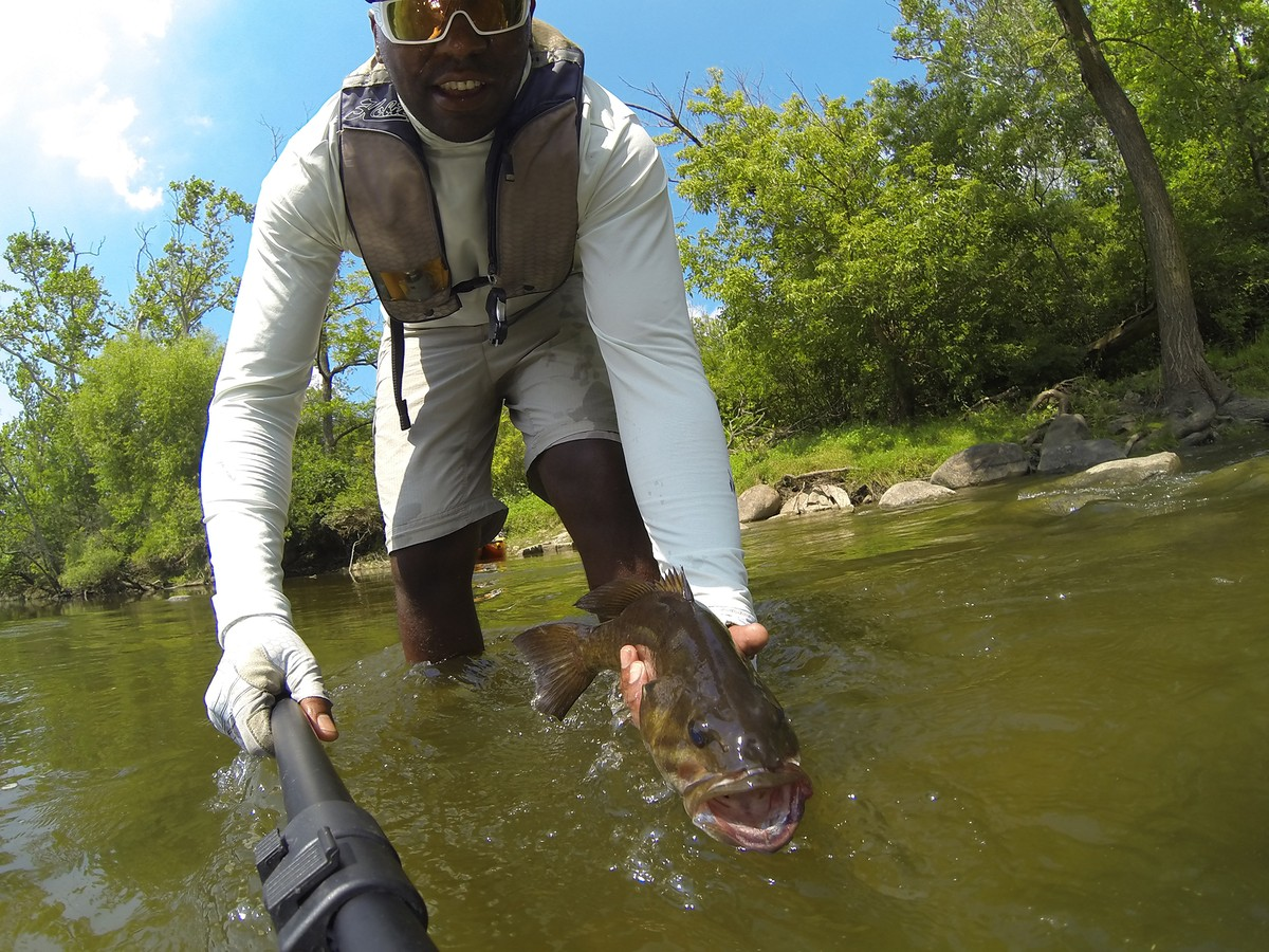Article image - summertime river monsters