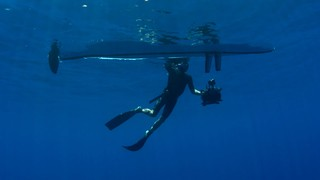 The Hobie Experience with Rick Rosenthal - Diving Costa Rica
