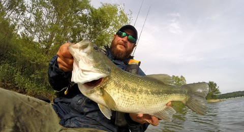 Article image - Topwater Bass Blitz
