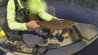 Road Trip 2013: Gatson, AR- White River Trout - (S3E5)
