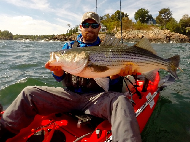 William Beringer