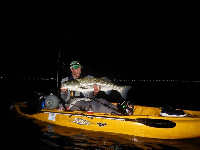 Matt Zimmerman