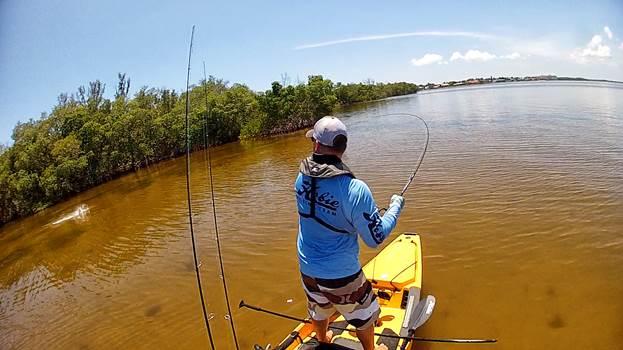 Ross Gallagher, Snook Strike on Caloosahatchee River